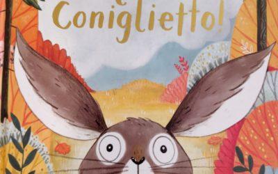 """Coraggio coniglietto! Un libro per i bambini con la """"sindrome della capanna"""""""